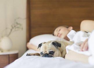 Как да подобрим запомнянето на сънищата си