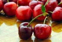 Вишна Prunus cerasus L.