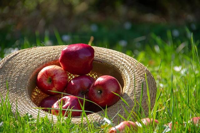 Лечебната магия на ябълките
