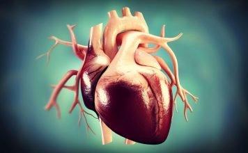 Шумове на сърцето