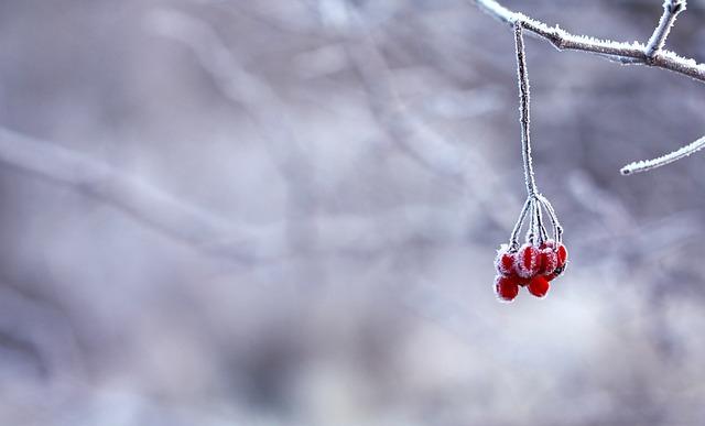 Суеверия за времето - За студ