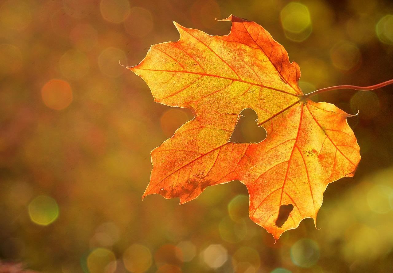 Есенните месеци
