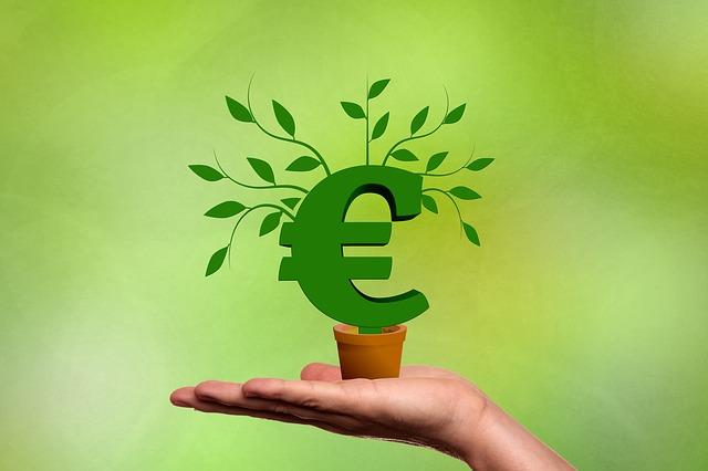 Дърво на парите - поверия