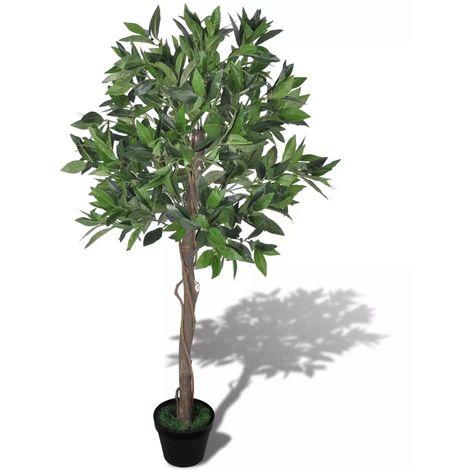 Лаврово дърво