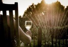 сънища с вино