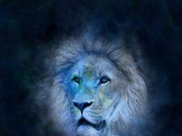 Всичко за зодия Лъв
