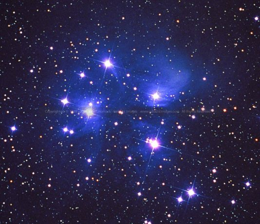 звездите и зодиите