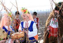 Традиции и обичаи за Трифоновден