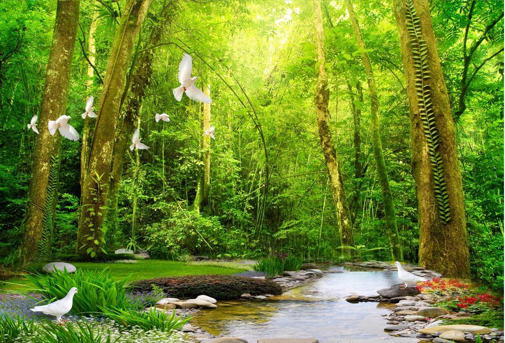 Лекове с езерна вода и горски въздух - гора