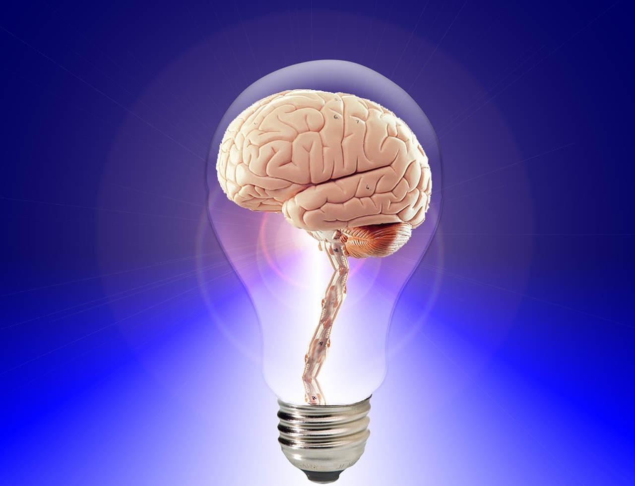 Навици които увреждат мозъка