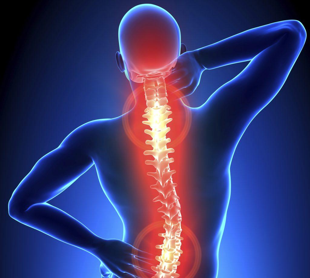 Здравето на гръбначният ви стълб