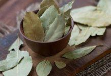 дафиновият лист