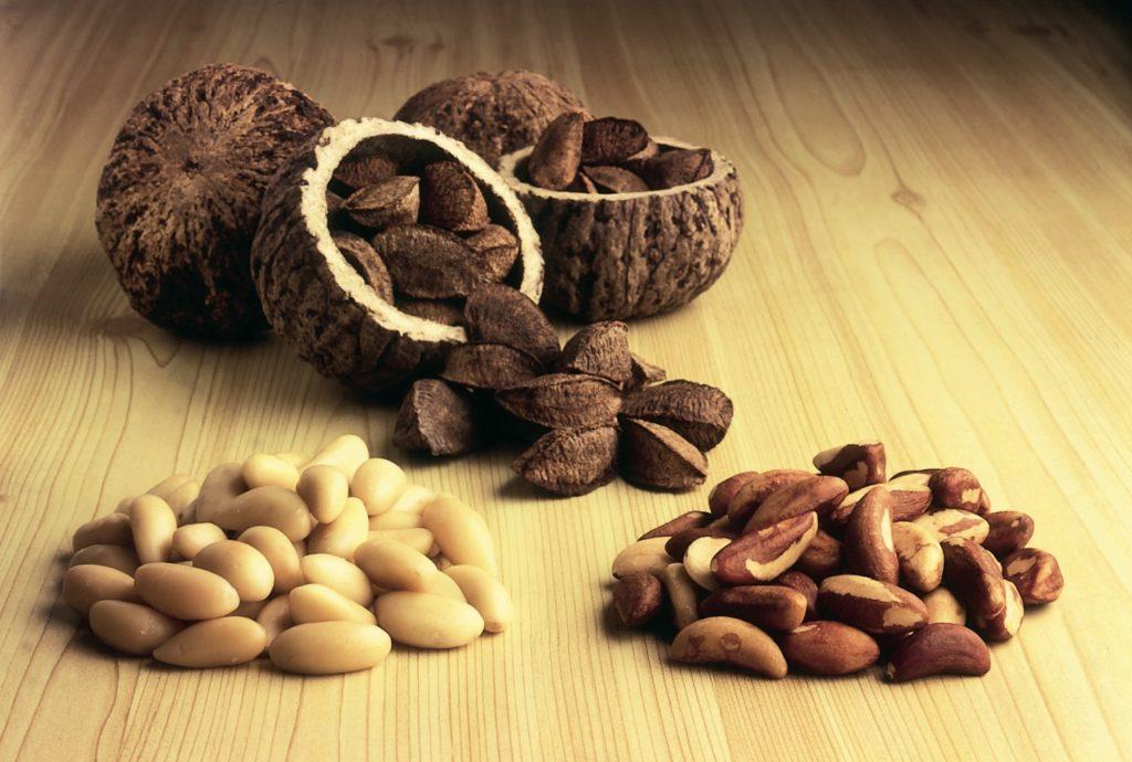 Бразилски орехи – перфектен източник на селен