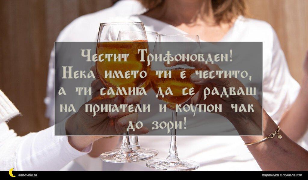 Честит Трифоновден! Нека името ти е честито, а ти самия да се радваш на приятели и купон чак до зори!