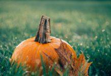 Именни дни през Октомври