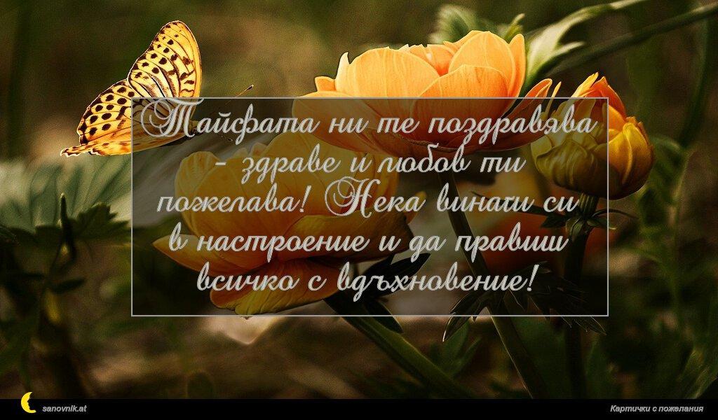 Тайфата ни те поздравява - здраве и любов ти пожелава! Нека винаги си в настроение и да правиш всичко с вдъхновение!