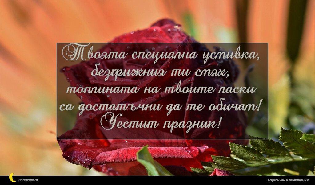 Твоята специална усмивка, безгрижния ти смях, топлината на твоите ласки са достатъчни да те обичам! Честит празник!
