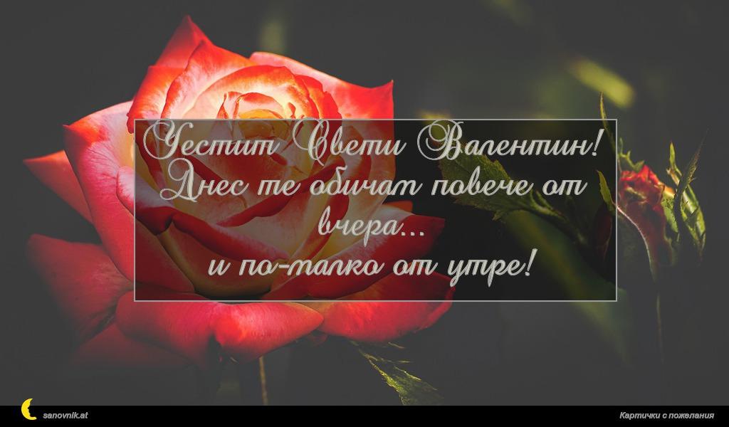 Честит Свети Валентин! Днес те обичам повече от вчера... и по-малко от утре!