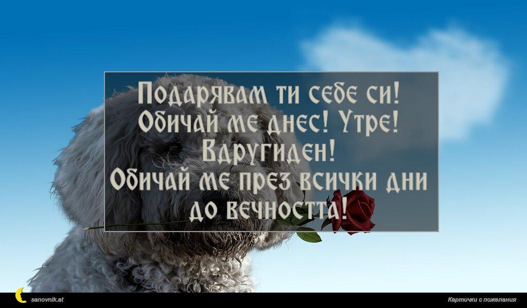 Подарявам ти себе си! Обичай ме днес! Утре! Вдругиден! Обичай ме през всички дни до вечността!