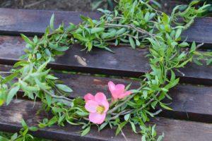 Обичаи за Цветница