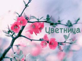 Цветница - поверия