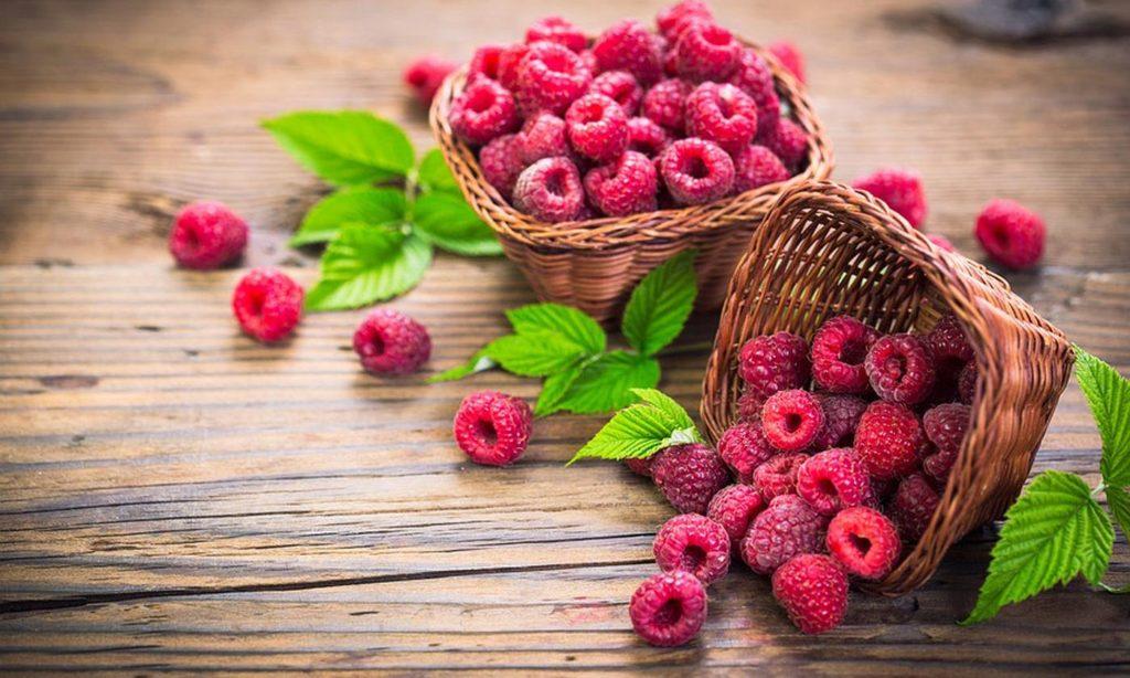 Малина Rubus Idaeus - лечебна билка