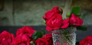 зодиите и цветята