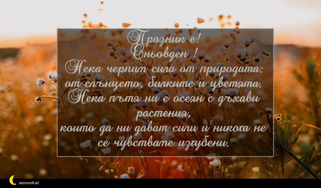 Празник е! Еньовден ! Нека черпим сила от природата: от слънцето, билките и цветята. Нека пътя ни е осеян с дъхави растения, които да ни дават сили и никога не се чувстваме изгубени.