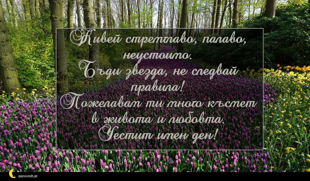 Живей стремглаво, палаво, неустоимо. Бъди звезда, не следвай правила! Пожелавам ти много късмет в живота и любовта. Честит имен ден!