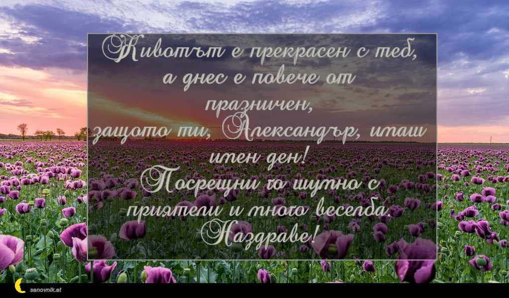 Животът е прекрасен с теб, а днес е повече от празничен, защото ти, Александър, имаш имен ден! Посрещни го шумно с приятели и много веселба. Наздраве!
