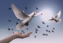 духовност