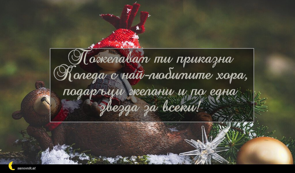Пожелавам ти приказна Коледа с най-любимите хора, подаръци желани и по една звезда за всеки!