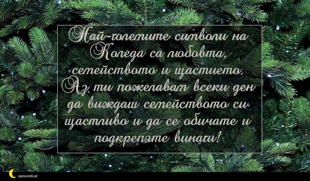 Най-големите символи на Коледа са любовта, семейството и щастието. Аз ти пожелавам всеки ден да виждаш семейството си щастливо и да се обичате и подкрепяте винаги!