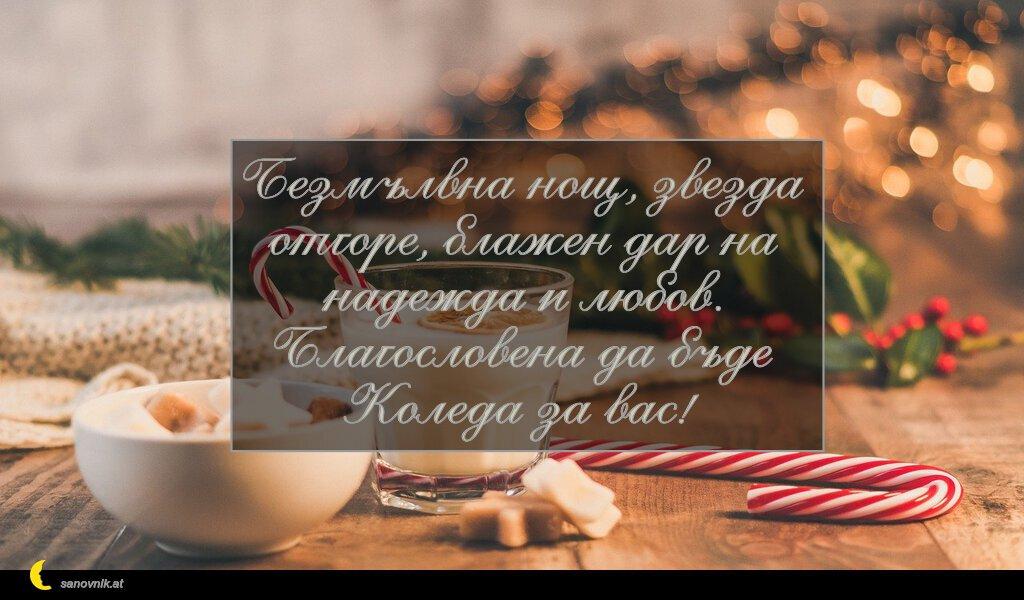 Безмълвна нощ, звезда отгоре, блажен дар на надежда и любов. Благословена да бъде Коледа за вас!