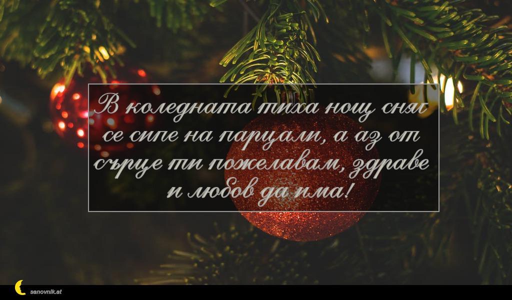 В коледната тиха нощ сняг се сипе на парцали, а аз от сърце ти пожелавам, здраве и любов да има!