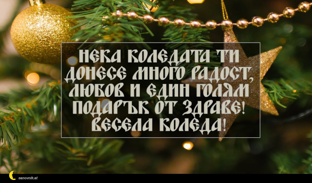 Нека Коледата ти донесе много радост, любов и един голям подарък от здраве! Весела Коледа!