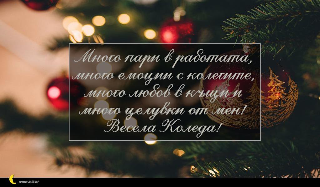 Много пари в работата, много емоции с колегите, много любов в къщи и много целувки от мен! Весела Коледа!