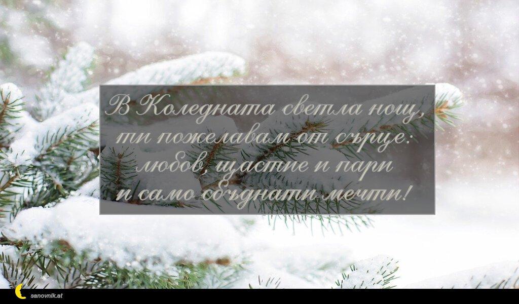 В Коледната светла нощ, ти пожелавам от сърце: любов, щастие и пари и само сбъднати мечти!
