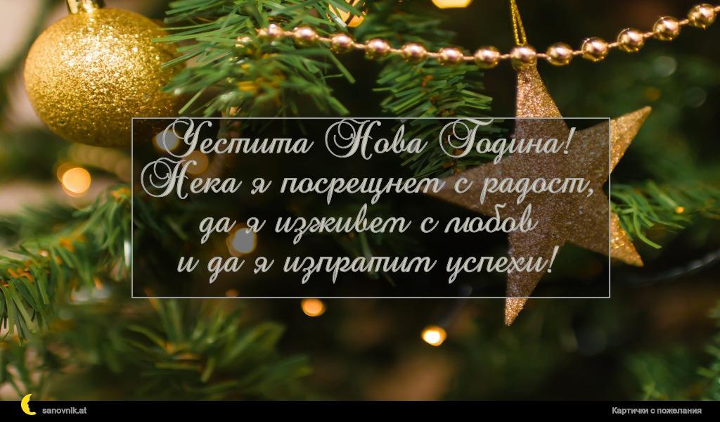 Честита Нова Година! Нека я посрещнем с радост, да я изживем с любов и да я изпратим успехи!