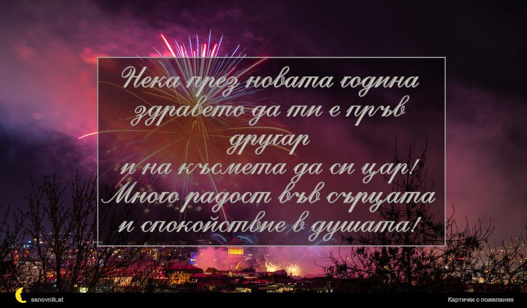 Нека през новата година здравето да ти е пръв другар и на късмета да си цар! Много радост във сърцата и спокойствие в душата!