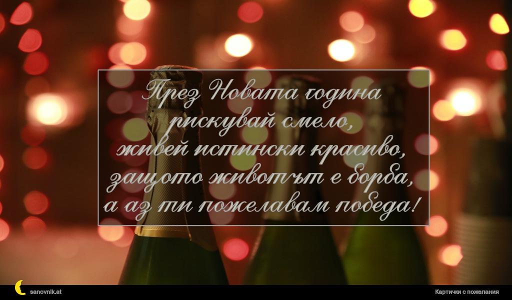 През Новата година рискувай смело, живей истински красиво, защото животът е борба, а аз ти пожелавам победа!