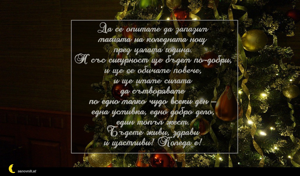 Да се опитаме да запазим магията на коледната нощ през цялата година. И със сигурност ще бъдем по-добри, и ще се обичаме повече, и ще имаме силата да сътворяваме по едно малко чудо всеки ден – една усмивка, едно добро дело, един топъл жест. Бъдете живи, здрави и щастливи! Коледа е!