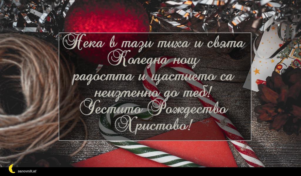Нека в тази тиха и свята Коледна нощ радостта и щастието са неизменно до теб! Честито Рождество Христово!