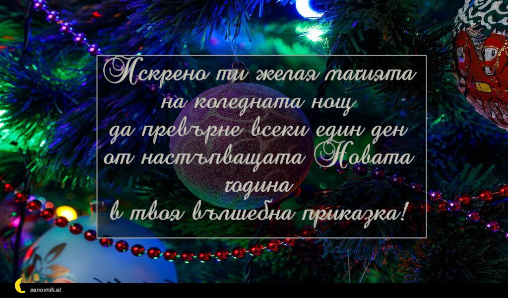 Искрено ти желая магията на коледната нощ да превърне всеки един ден от настъпващата Новата година в твоя вълшебна приказка!