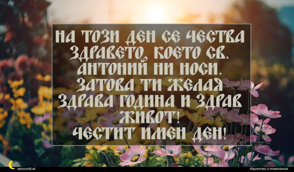 На този ден се чества здравето, което Св. Антоний ни носи. Затова ти желая здрава година и здрав живот! Честит имен ден!
