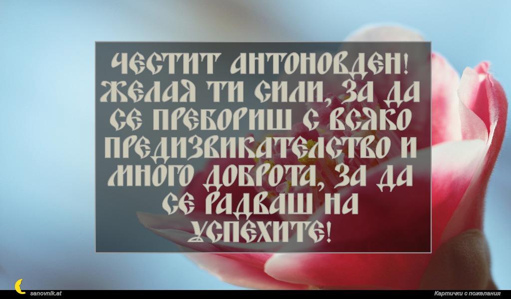 Честит Антоновден! Желая ти сили, за да се пребориш с всяко предизвикателство и много доброта, за да се радваш на успехите!