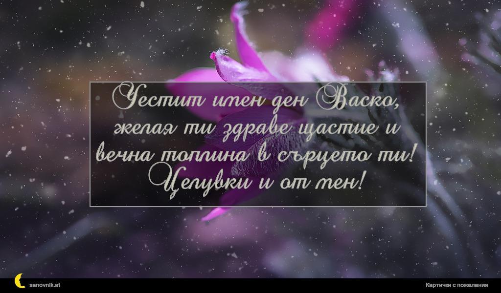 Честит имен ден Васко, желая ти здраве щастие и вечна топлина в сърцето ти! Целувки и от мен!