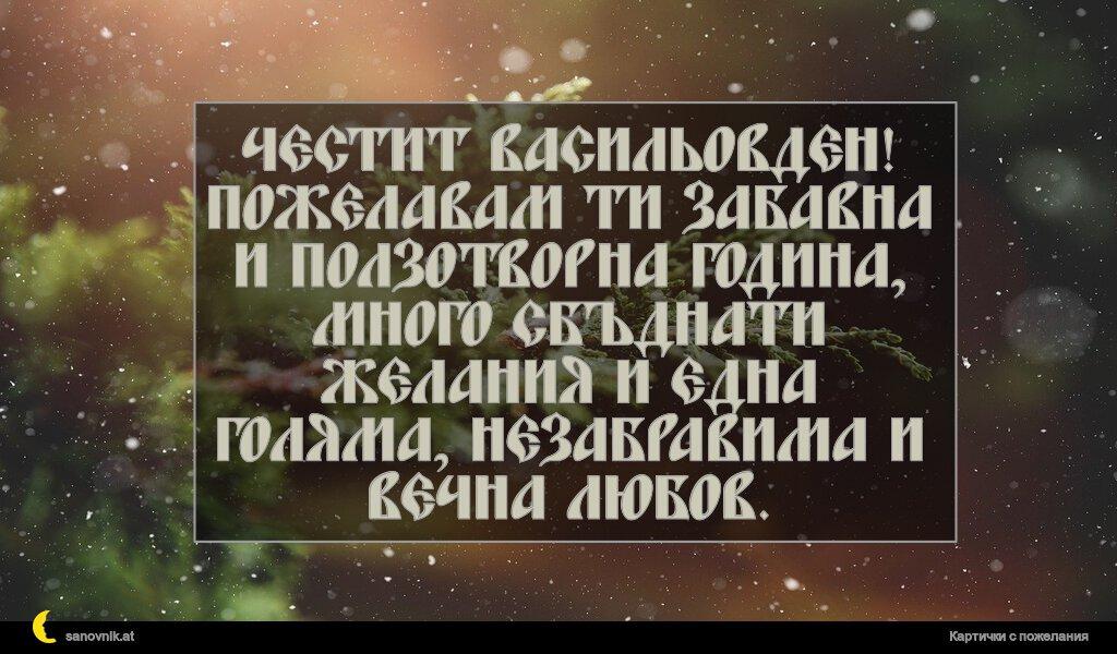 Честит Васильовден! Пожелавам ти забавна и ползотворна година, много сбъднати желания и една голяма, незабравима и вечна любов.